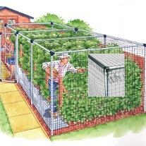 Fruit Cage - Standard 6'x6'