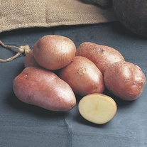 Potato (Maincrop) Desiree
