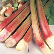 Rhubarb Timperley Early Crown