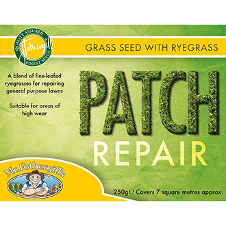Lawn Seed Patch Repair with ryegrass