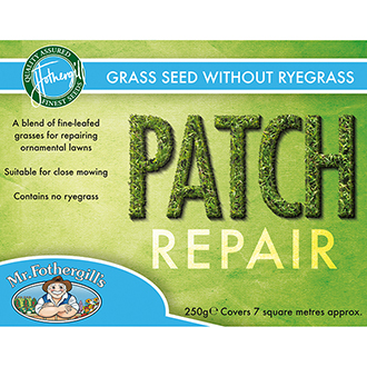 Lawn Seed Patch Repair without ryegrass