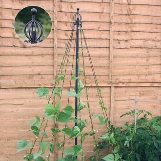 Garden Wigwam
