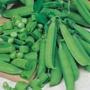 Pea Sugar Bon Seeds