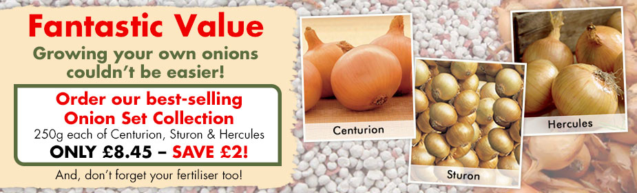 Fantastic Value Onion Set Collection