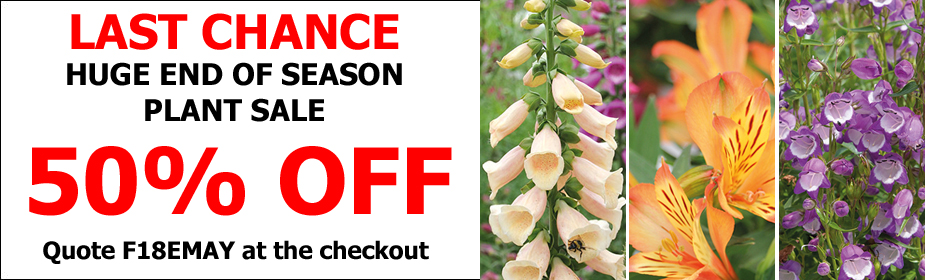 HUGE End of Season Plant Sale - 50% OFF!