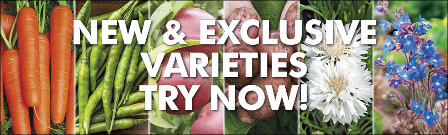 New and Exclusive varieties