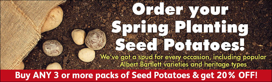 Order Your Spring Planting Seed Potatoes