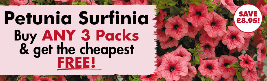 Buy ANY 2 Packs of Petunia Surfinia & get the Cheapest FREE!