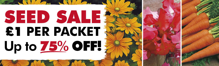 £1 SEED SALE!  Up to 75% OFF