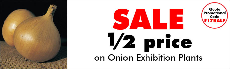 Half Price Onion Exhibition Plants