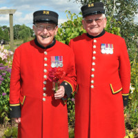 Chelsea Pensioners name new sweet pea Scarlet Tunic after Royal Hospital and Public Votes