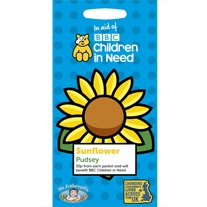 Children in Need Sunflower Pudsey