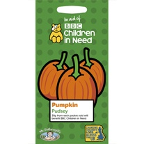 Children in Need Pumpkin Pudsey