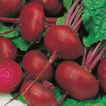 Beetroot Crosbys Egyptian Seeds