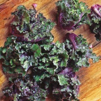 Kalettes® Mixed Seeds