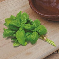 Basil Aroma 2 F1 Seeds