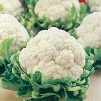 David Domoney, Get Growing Cauliflower