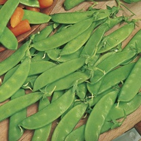 David Domoney, Get Growing Pea Mangetout