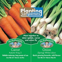 Planting Companions - Carrot & Spring Onion Seeds