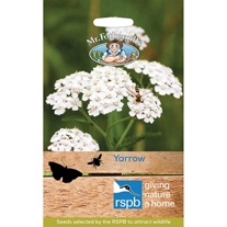 RSPB Yarrow Seeds