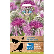 RSPB Greater Knapweed Seeds
