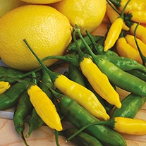 Chilli Pepper Peruvian Lemon Drop Seeds