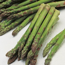 RHS Asparagus Connover's Colossal