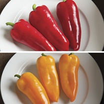 Pepper Cornitos Red & Yellow Mix