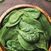 Spinach Helios F1