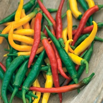 Pepper (Hot) Devil's Brew Vegetable Seeds