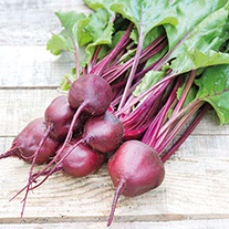 Beetroot Kornett Vegetable Seeds