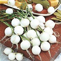 Onion De Paris (Silverskin) Vegetable Seeds