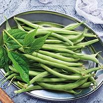 RHS Dwarf (French) Bean Elba Vegetable Seeds