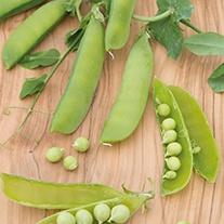 Pea (Snap) Sugar Sprint Vegetable Seeds