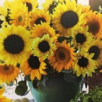 Sunflower Cutflower Mix Flower Seeds