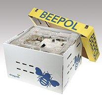 Beepol Large Bumblebee Hive