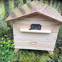 Beepol Villa & Large Bumblebee Hive