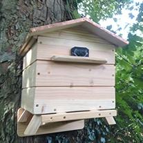 Beepol Tree Villa & Large Bumblebee Hive