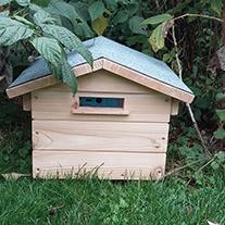 Beepol Villa & Bumblebee Hive