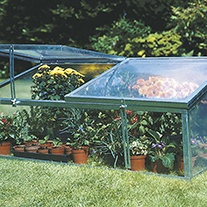 Cold Frame - Twin Lid