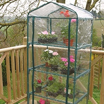 Four Tier Greenhouse