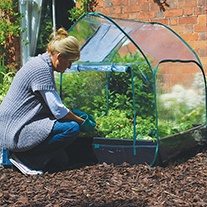 Pop-Up Cloche Cover
