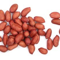 Peanut Bird Food