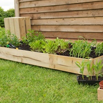 Standard Raised Bed 184 x 93cm