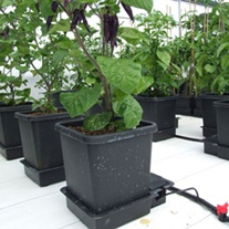 1 Pot Watering System Extension Module