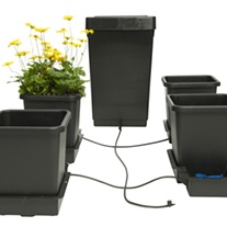4 Pot Watering System