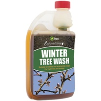 Winter Tree Wash