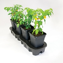 Quadgrow Watering System 4 pots