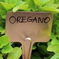 Copper Plant Labels