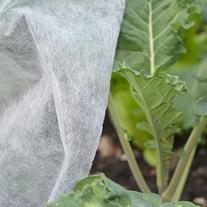 Plant Protection Fleece 17g